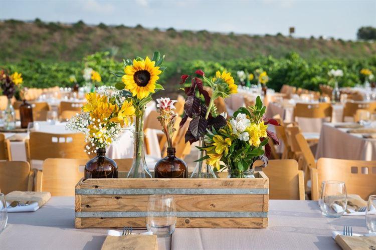 חתונה מקסימה שעוצבה בטוב טעם, החתונה של ירדן אהרוני וחגי טבת (צילום: עידן כנפי)